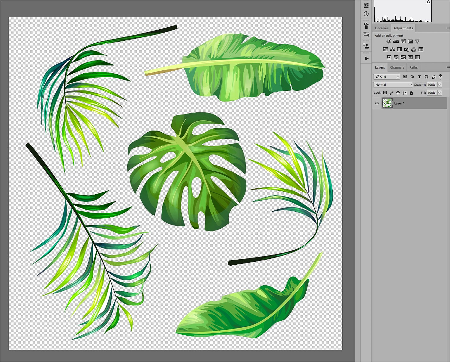 leaves - Basic Photoshop Tutorial - How to Add a Texture Overlay to Your Portraits