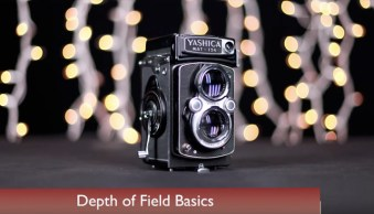 3 Elements of Getting Shallow Depth of Field Images