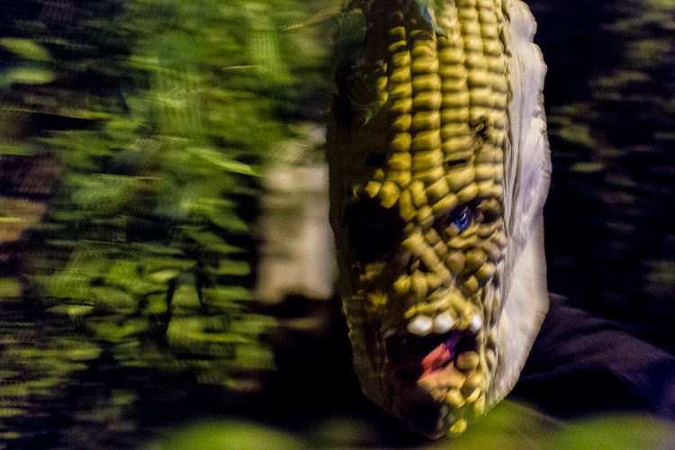 corn with a face - 10 Things You Can Learn About Photography from Elliott Erwitt
