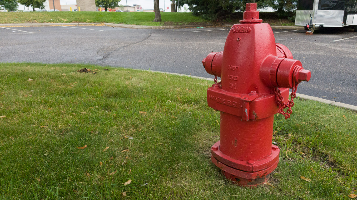 Mobile Phones Versus DSLRs - red fire hydrant