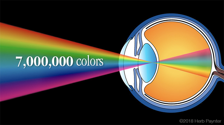 Image: While digital cameras can capture up to trillions of colors, human eyesight recognizes less t...