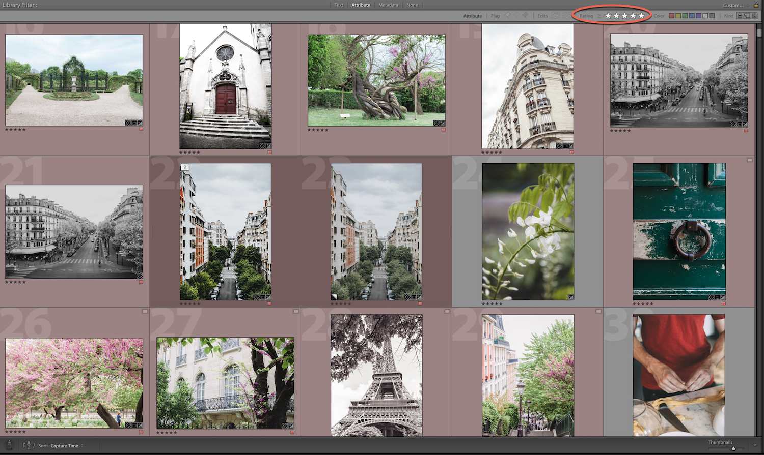 attribute - How to Find for Your Photos in the Lightroom Catalog Using Filters
