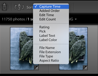 Capture Time-Sort - How to Find for Your Photos in the Lightroom Catalog Using Filters