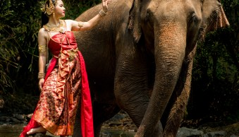 Thai Model and Elephant in a natural forest setting ©Kevin Landwer-Johan