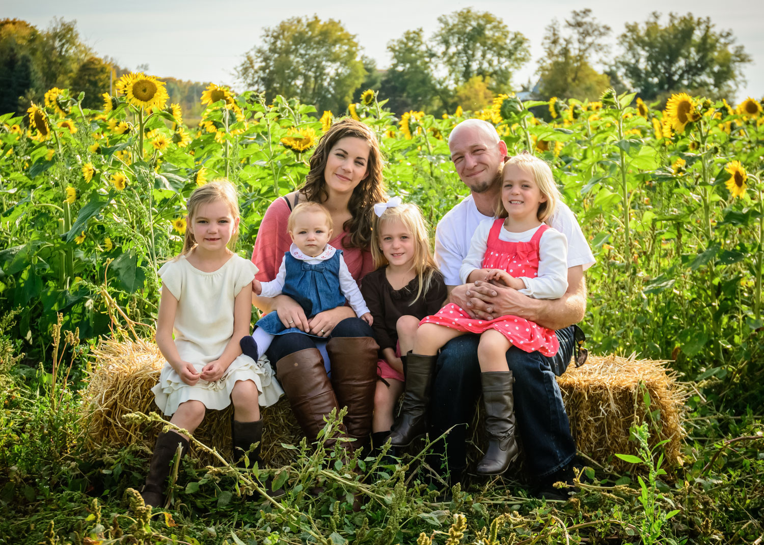 Family photo tips - sunflower field