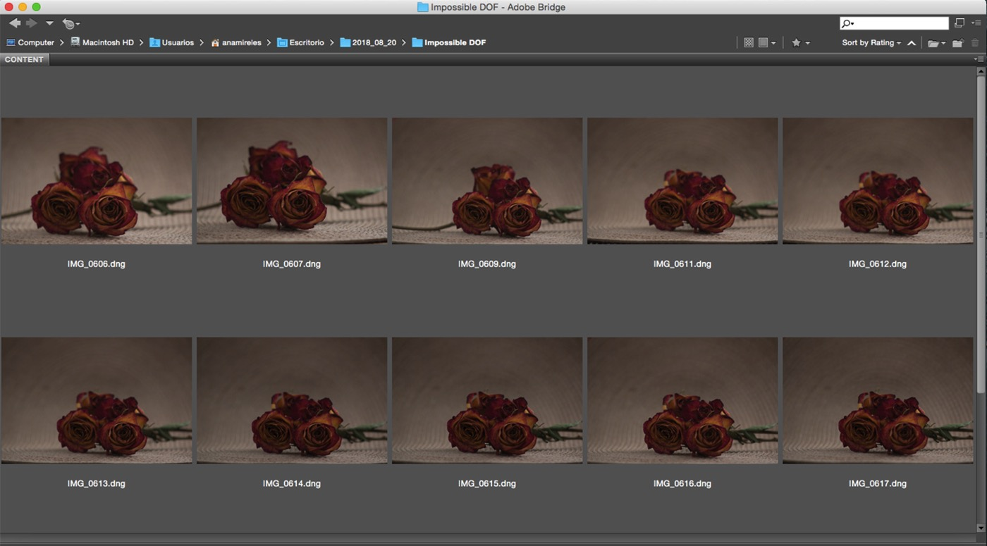 Focus Stacking for an Infinite Depth of Field - source images