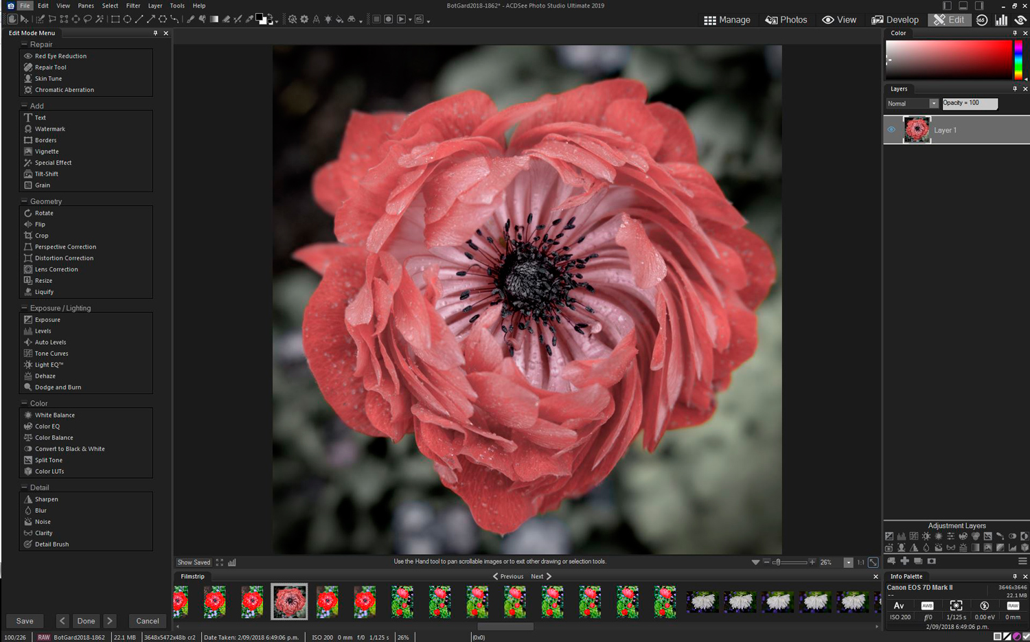 14 - ACDSee Photo Studio Ultimate 2019 Review