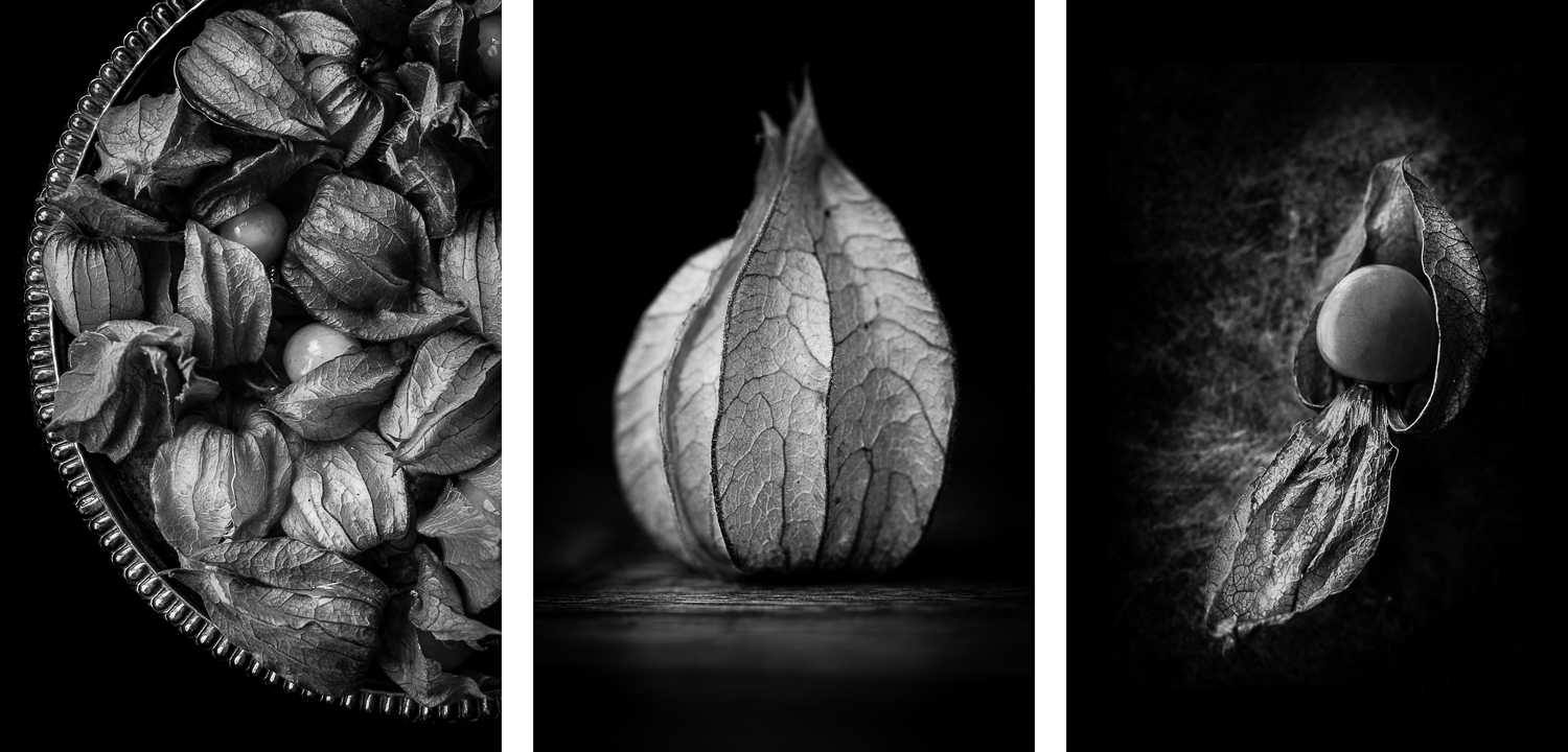 Physalis bw triptych - How to Create Fine Art Images from the Mundane