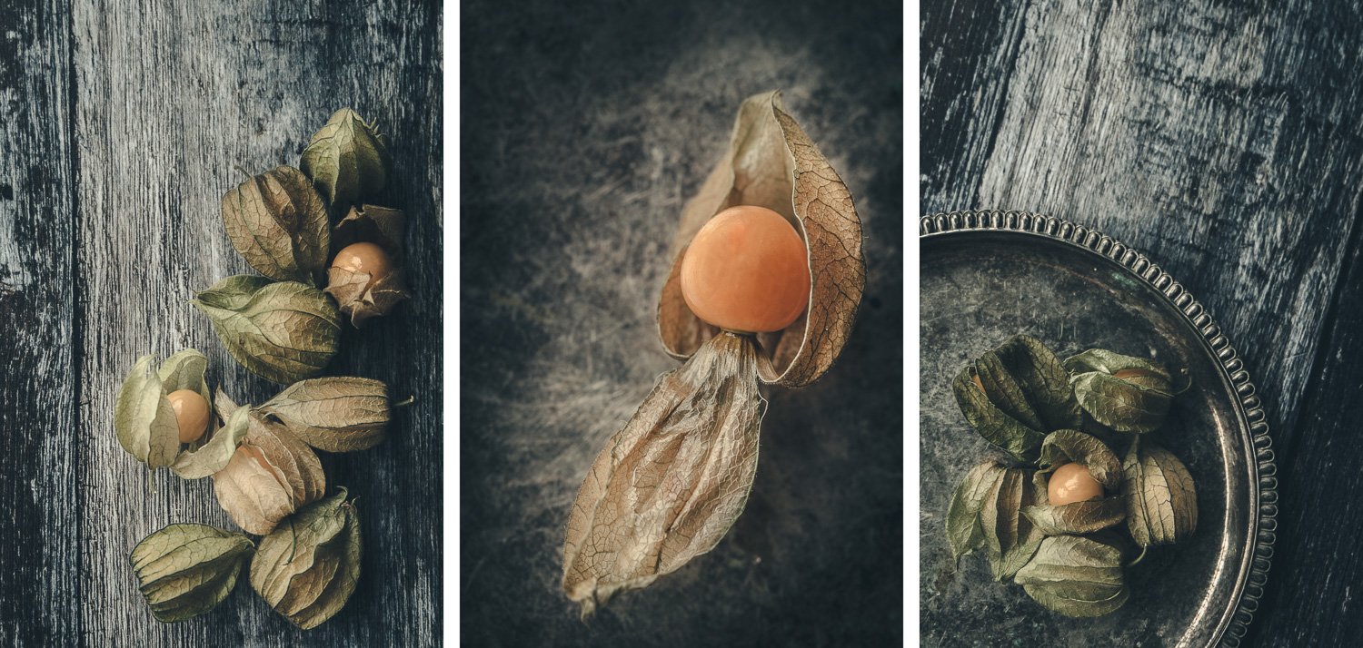 Physalis colour triptych