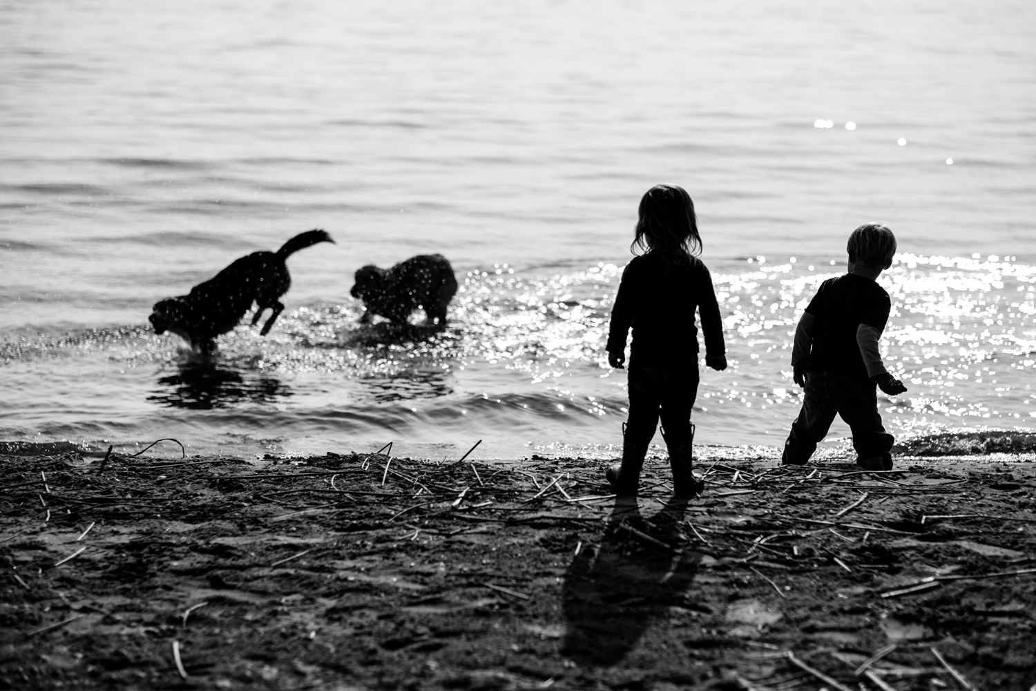 Image: It was a grey hazy day at the beach so I focused on silhouette photos of my kids at play.
