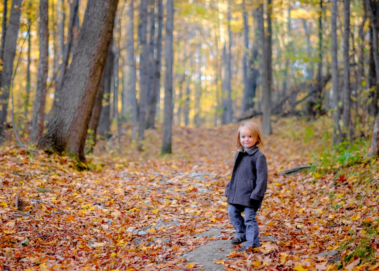 Image: I wanted a nice portrait of my daughter with these fall colors, but I knew I wouldn't b...