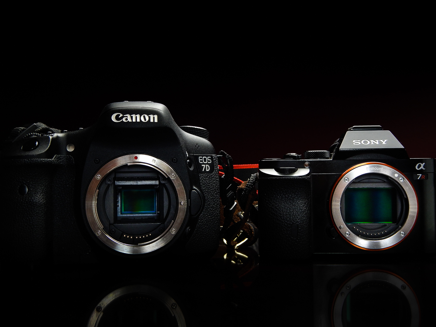 Why We Have Such a Love-Hate Relationship with Mirrorless Cameras