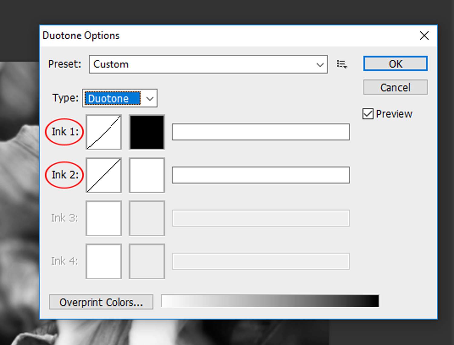 9 - How to Duotone a Photograph in Photoshop