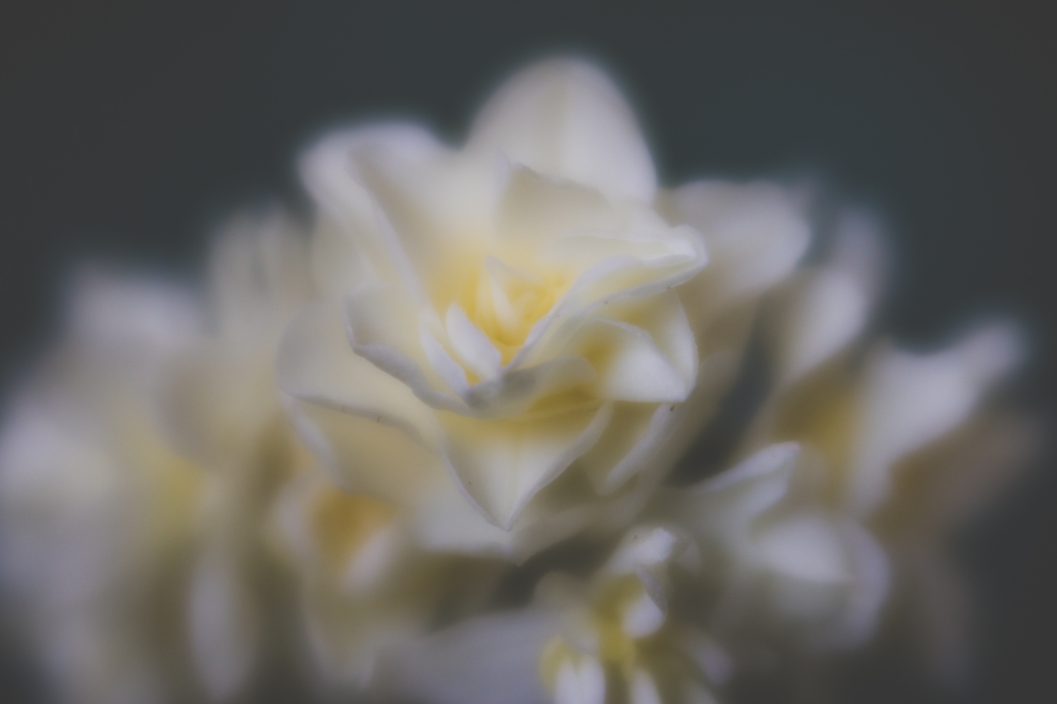 Blur and Creative Photography - Why Your Images Don't Need To Be 100% Sharp 10