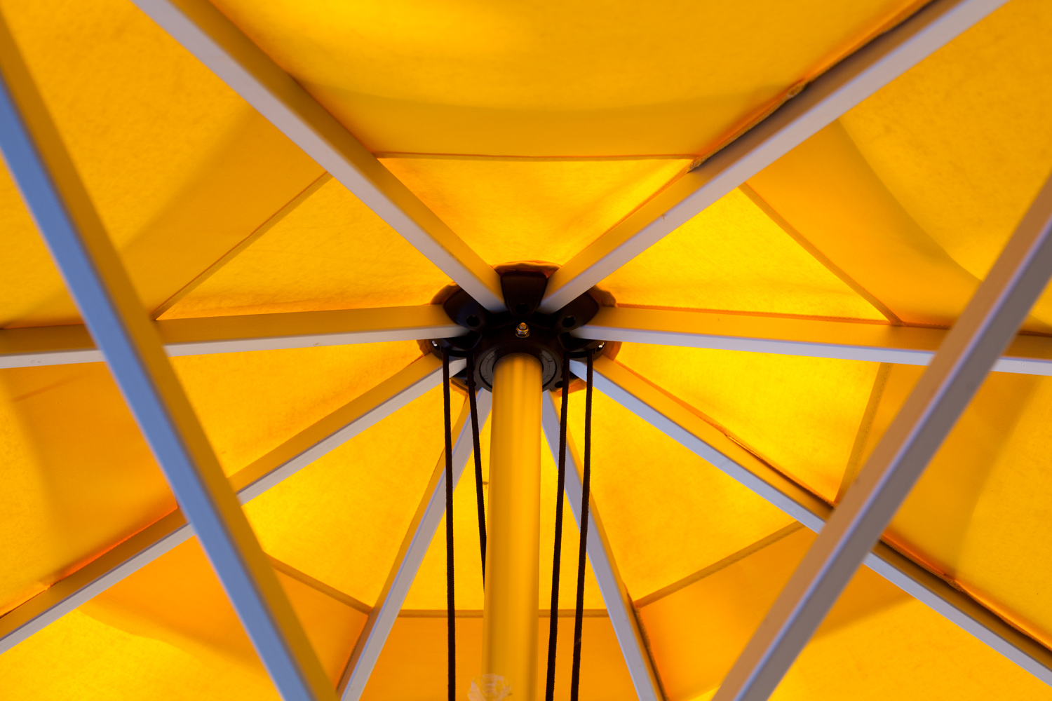 Image: A lighter lens meant I could easily sneak my camera under this umbrella for a photograph