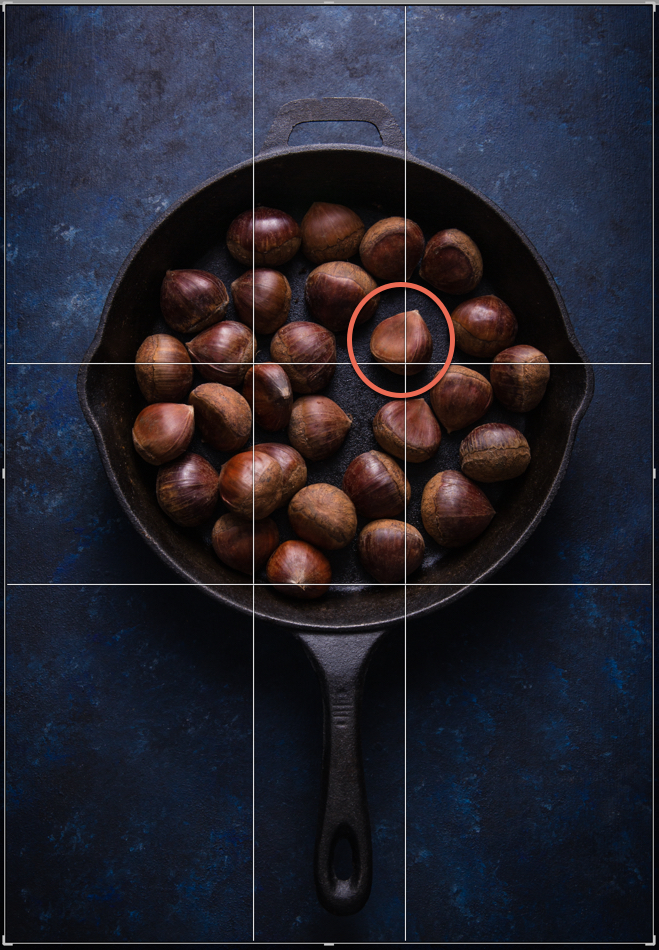 Rules of Composition for Still Life Photography-Darina Kopcok-DPS