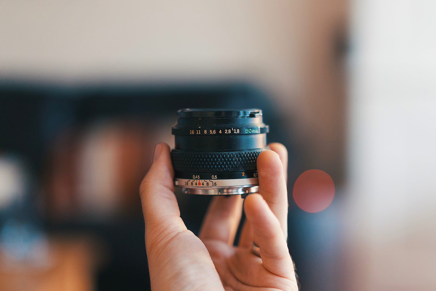 5 Reasons to Use Prime Lenses For Better Photos