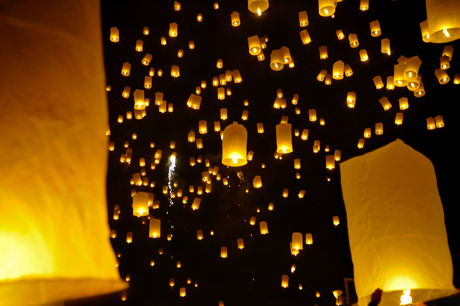 What to do When the Lights Down Low Loi Krathong