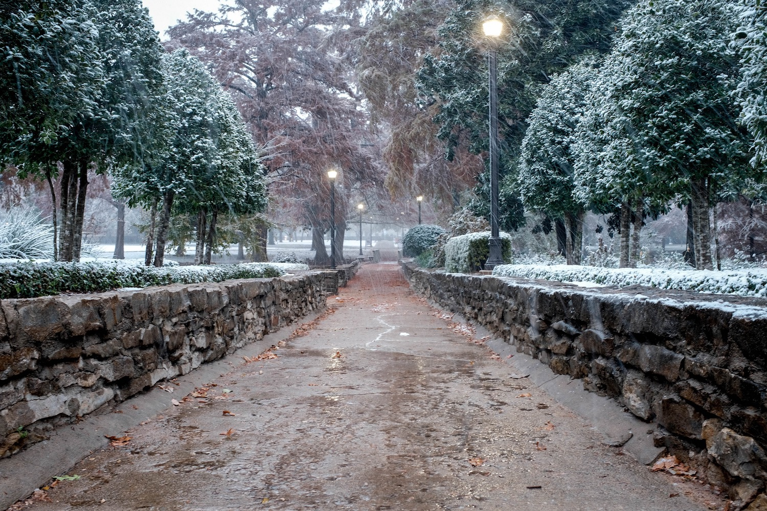 https://i2.wp.com/digital-photography-school.com/wp-content/uploads/2018/12/jpeg-sliders-winter-snow.jpg?resize=1500%2C1000&ssl=1