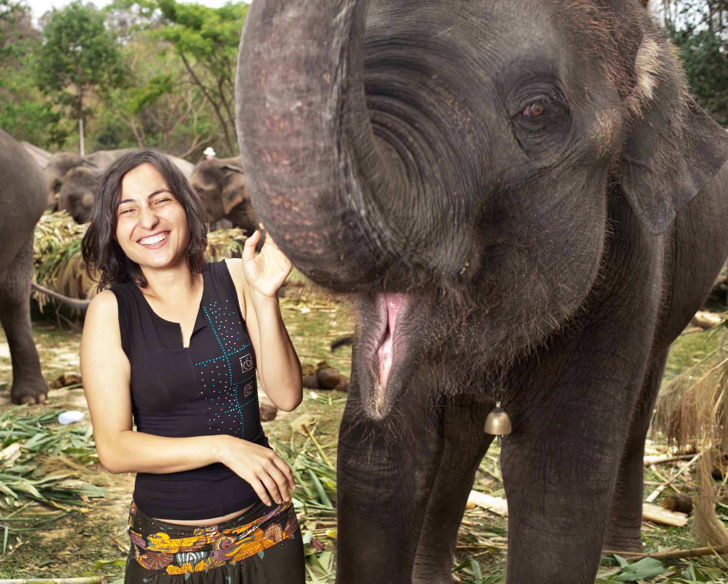 Woman and Elephants 7 Different Situations Where You Can Use Fill Flash Effectively
