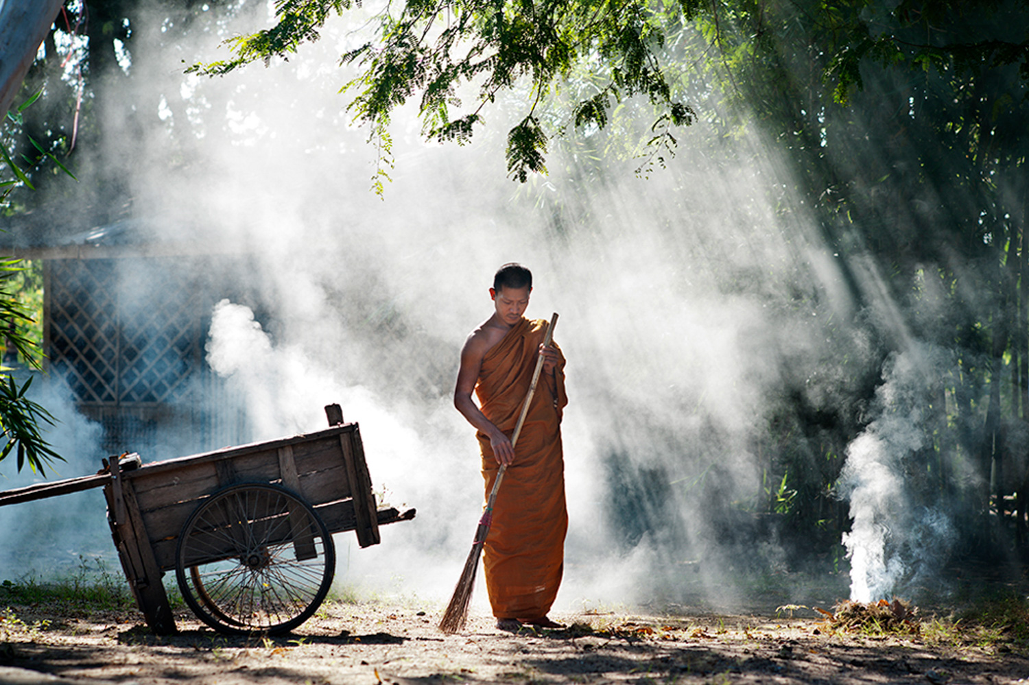Buddhist Monk Yard Work 15 Common Portrait Mistakes to Avoid
