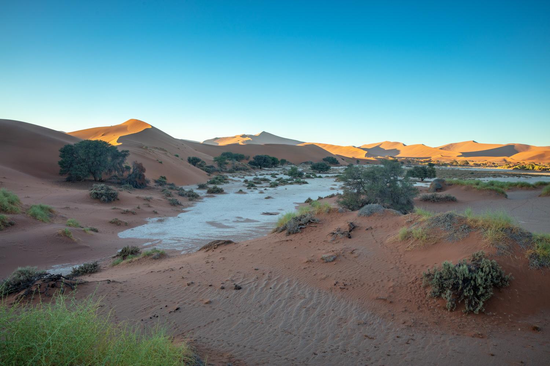 Image: Namibia © Jeremy Flint