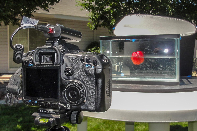 5- High-Speed Splash Photos Without Flash - Rick Ohnsman