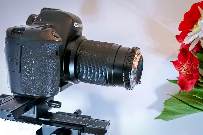 1 - reverse-lens-macro-photography-rick-ohnsman