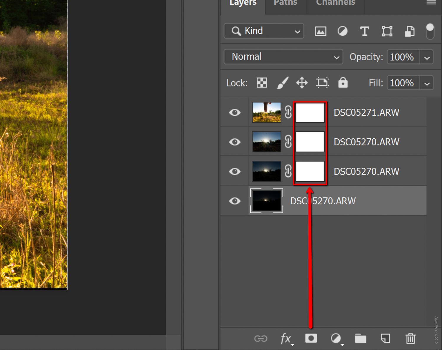 Lightroom-Photoshop-shooting-into-the-sun-digital-photography-school-adam-welch-3