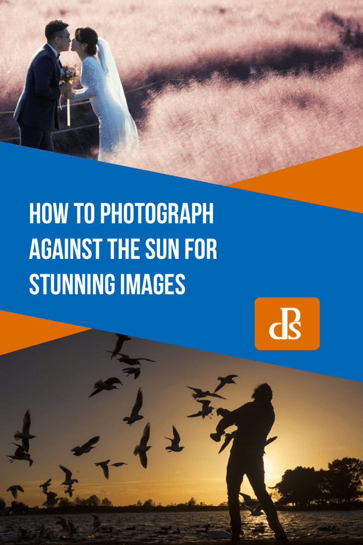 How to Photograph Against the Sun for Stunning Images