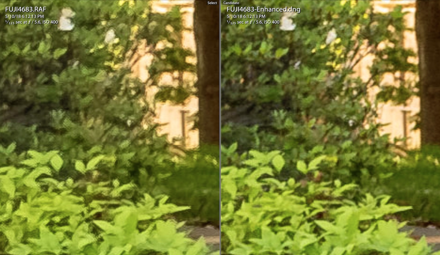 Image: Original on the left, Enhanced on the right.