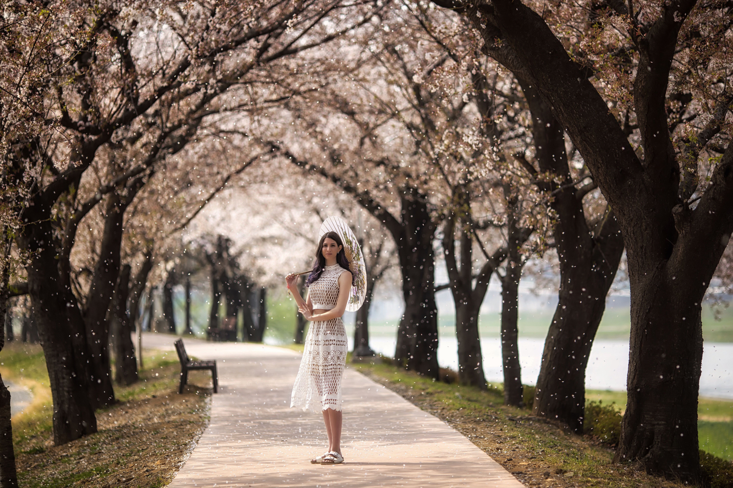 Image: In this photo the model stands under cherry blossom trees as the petals fall down.