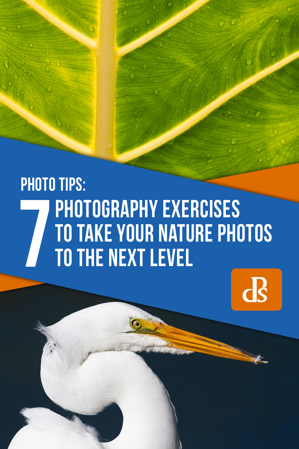 7 Photography Exercises to Take Your Nature Photos to the Next Level