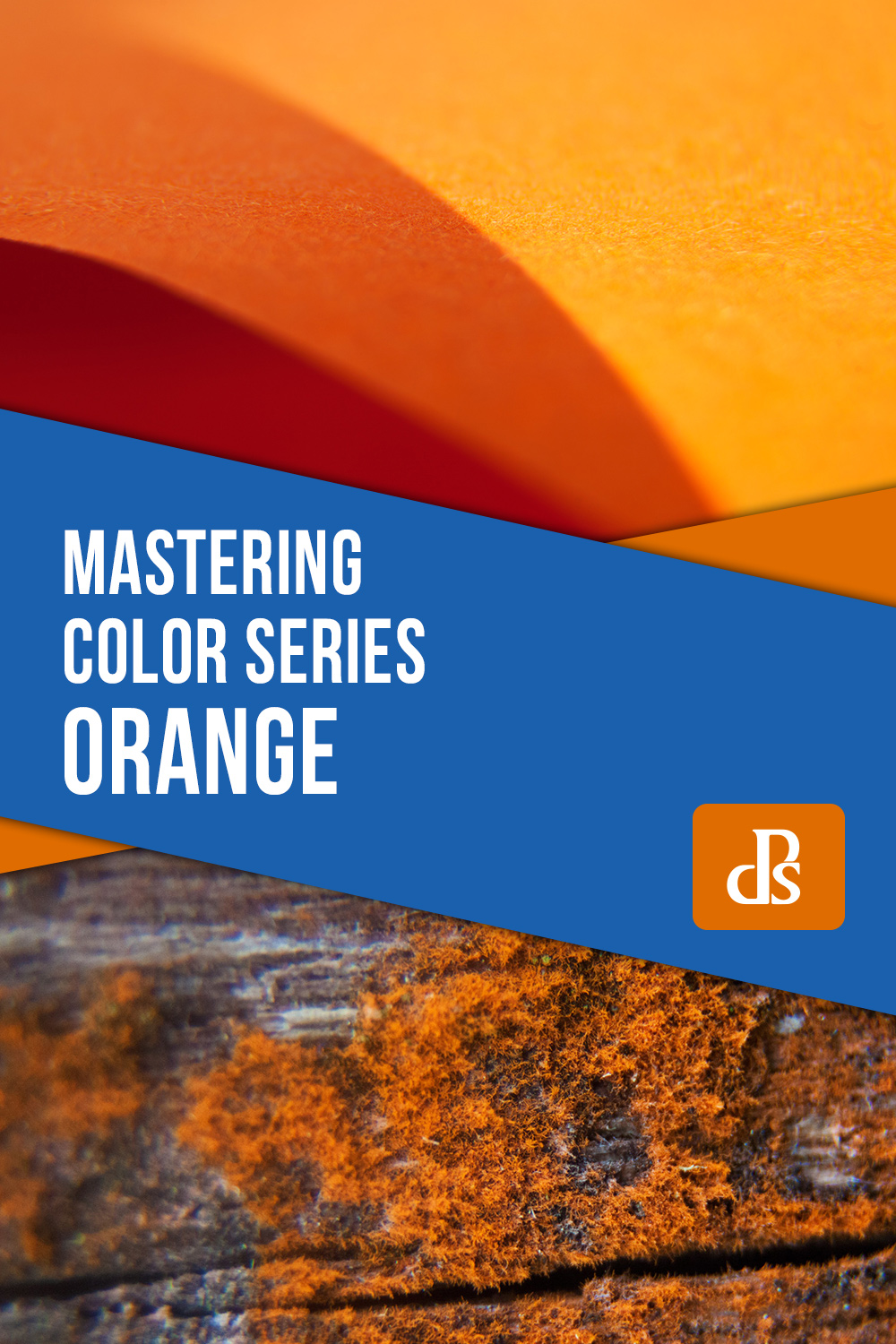 Mastering Color Series – The Psychology and Evolution of the Color ORANGE and its Use in Photography