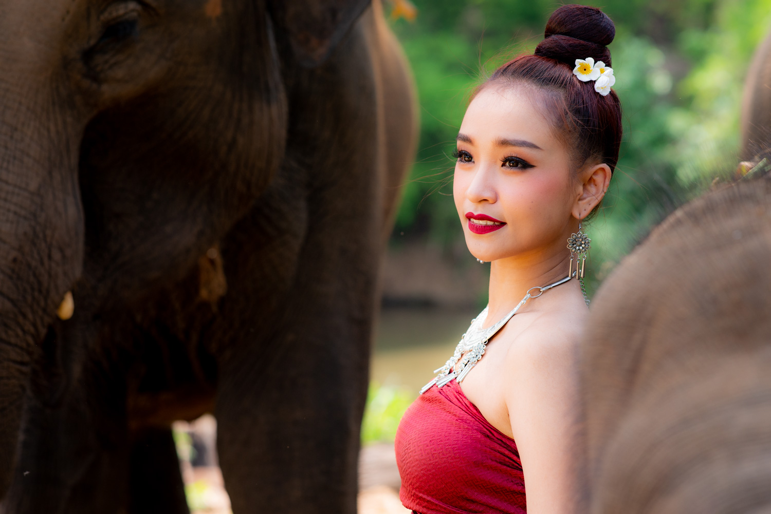 How To Control Depth of Field Thai Model with Elephants