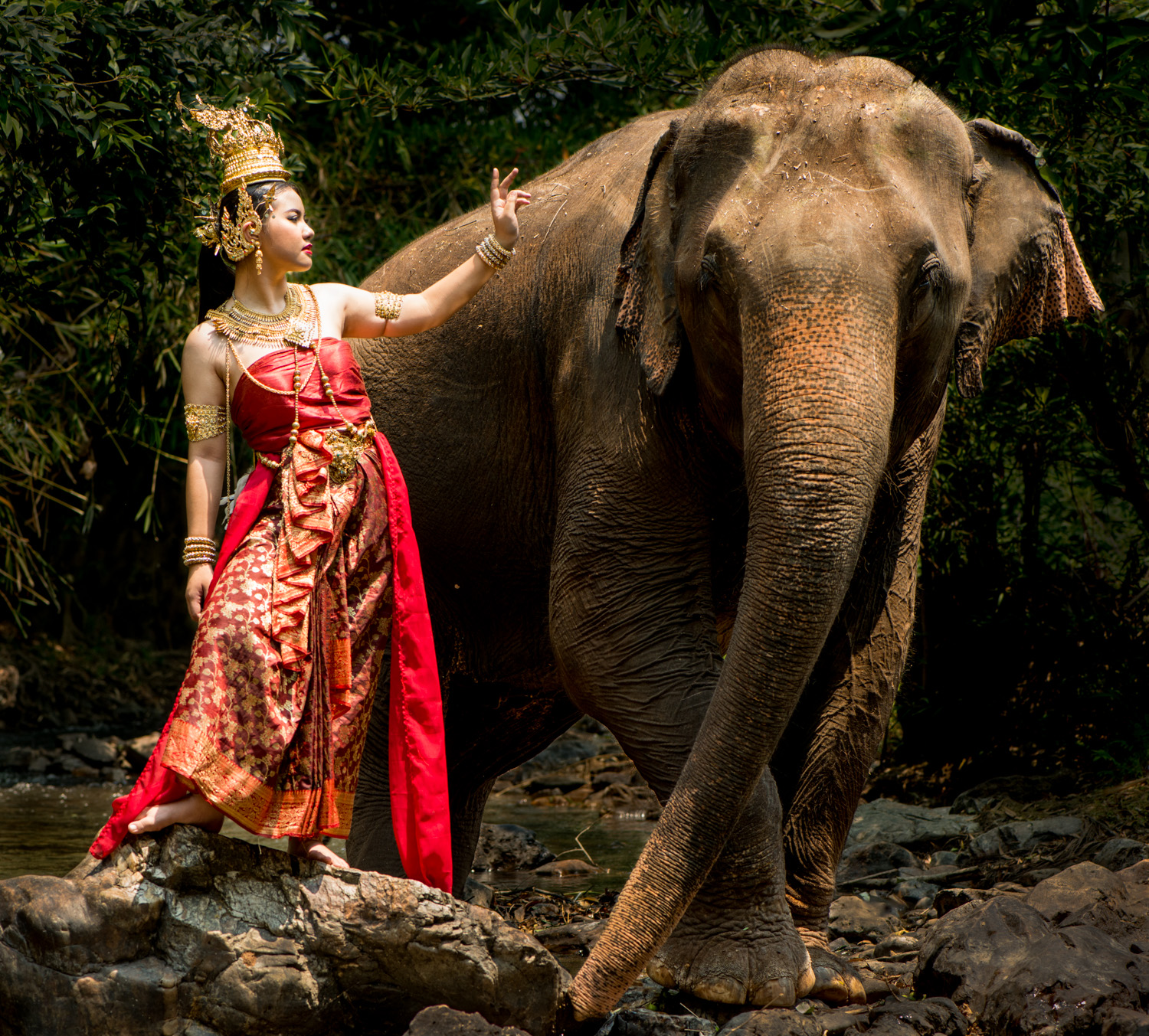 21 tips for Stock Photography Thai Model and Elephant