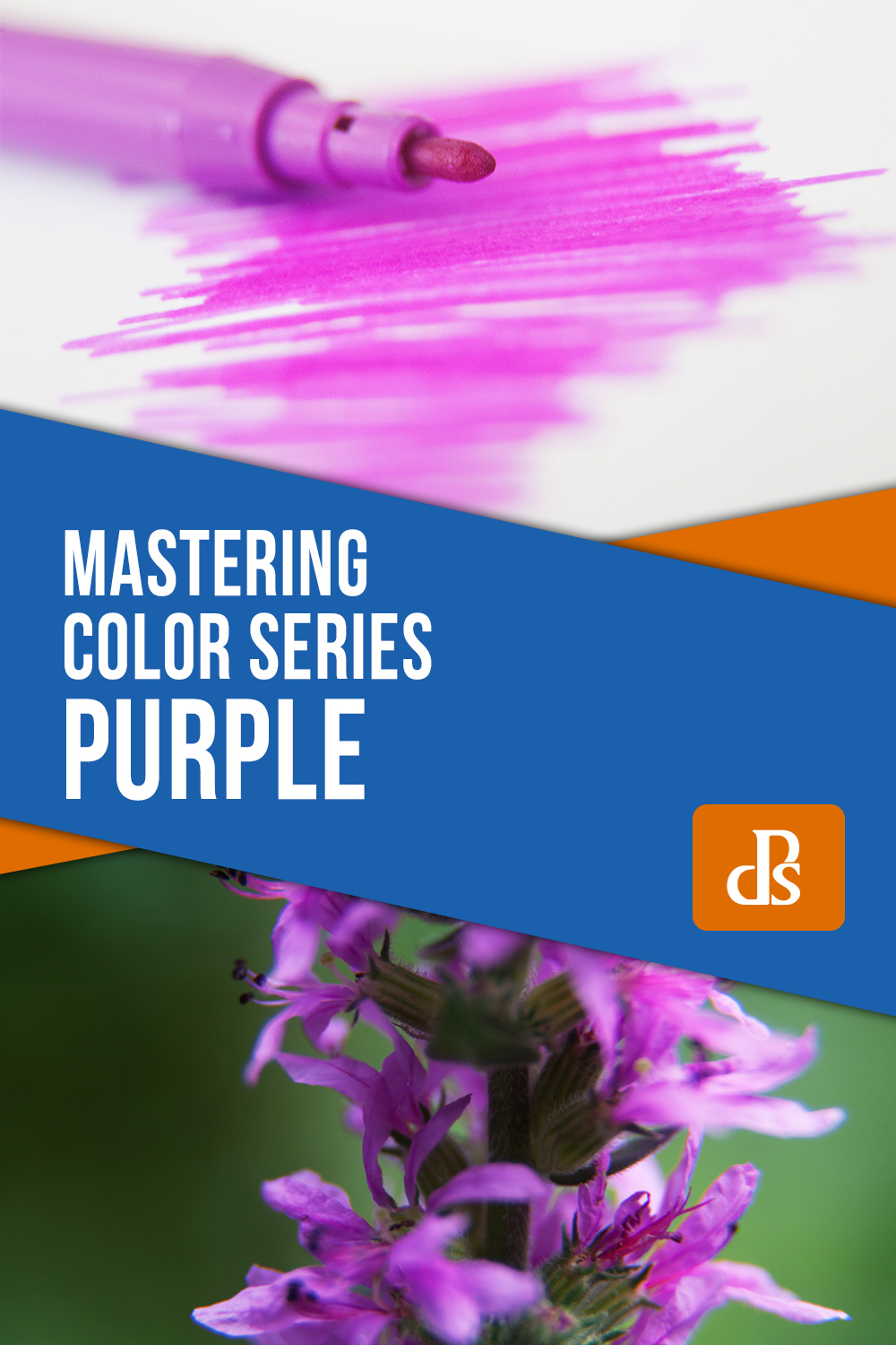 Mastering Color Series – The Psychology and Evolution of the Color PURPLE and its use in Photography