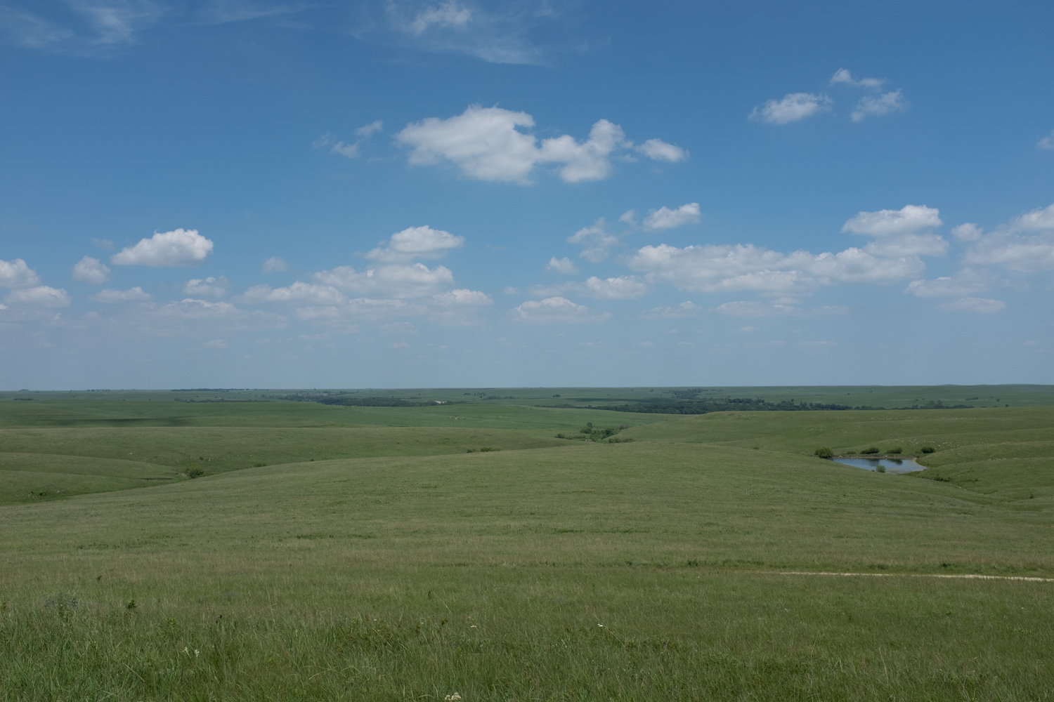 Image: Shot in the National Tallgrass Prairie Reserve in Kansas. An unedited photo directly from ...