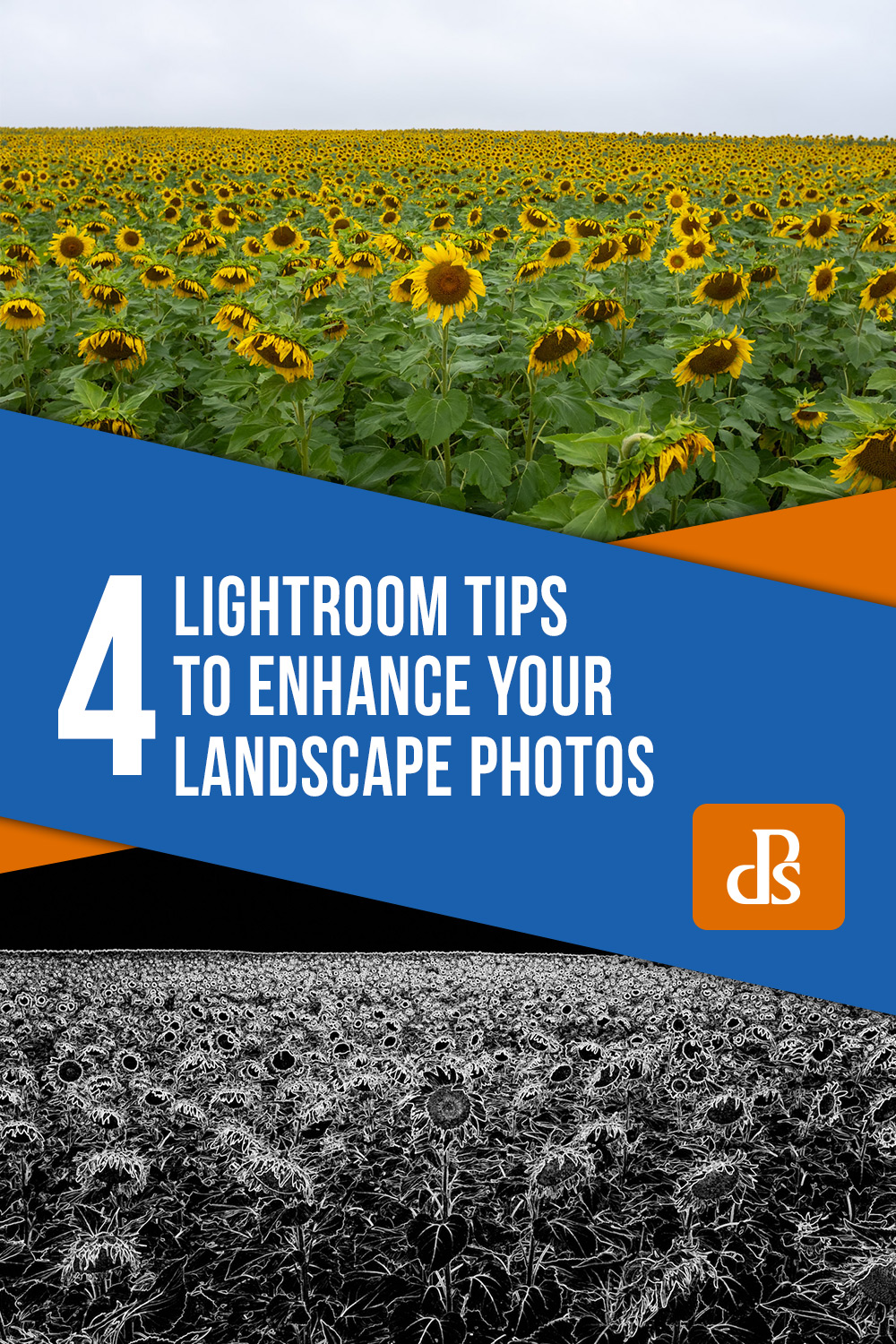 Lightroom tips for landscape photos' s