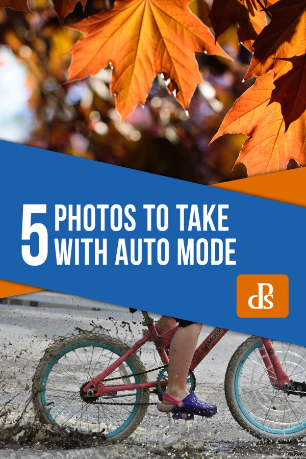 5 Photos to Take with Auto Mode