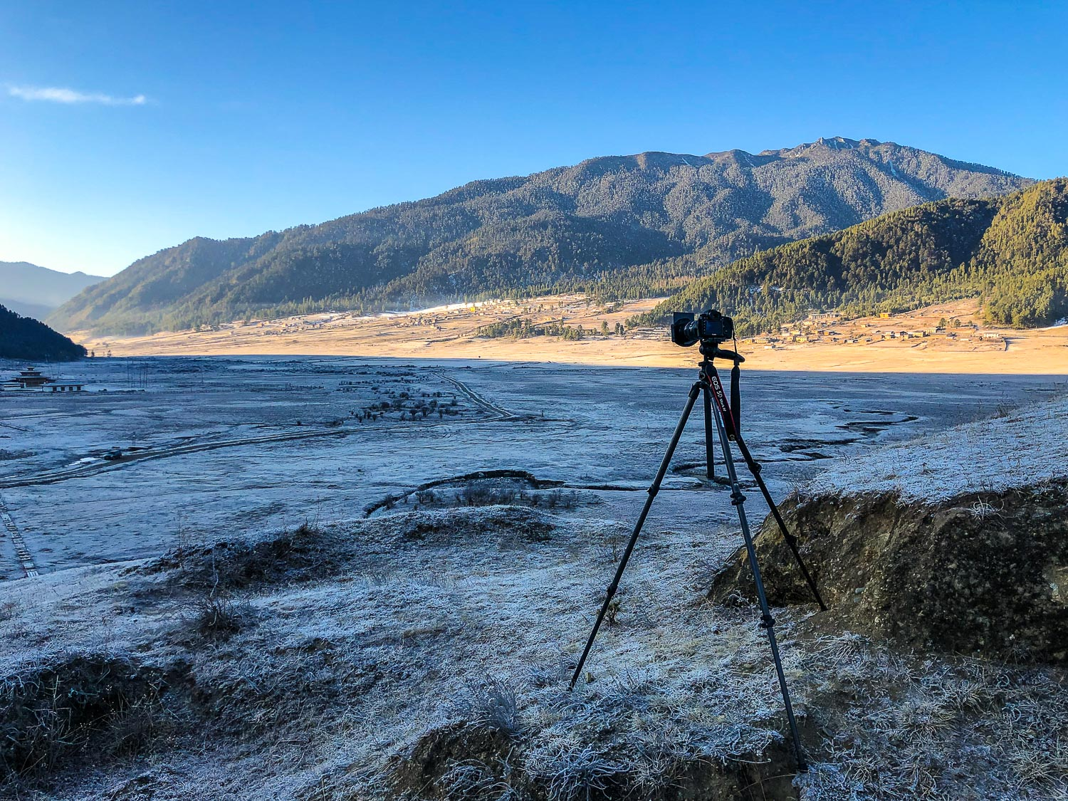 6 Reasons Your Photos Might Be Lacking Sharpness