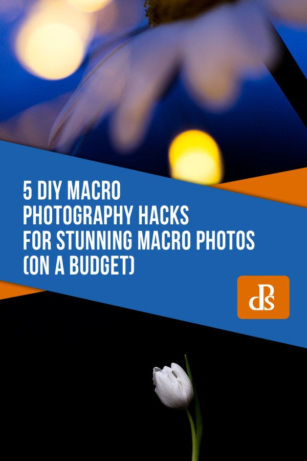 5 DIY Macro Photography Hacks for Stunning Macro Photos (on a Budget)