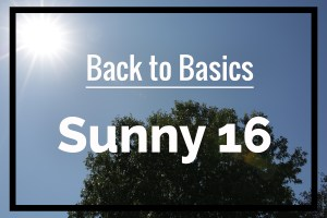 "Back to Basics: Understanding the ""Sunny 16 Rule"" in Photography"