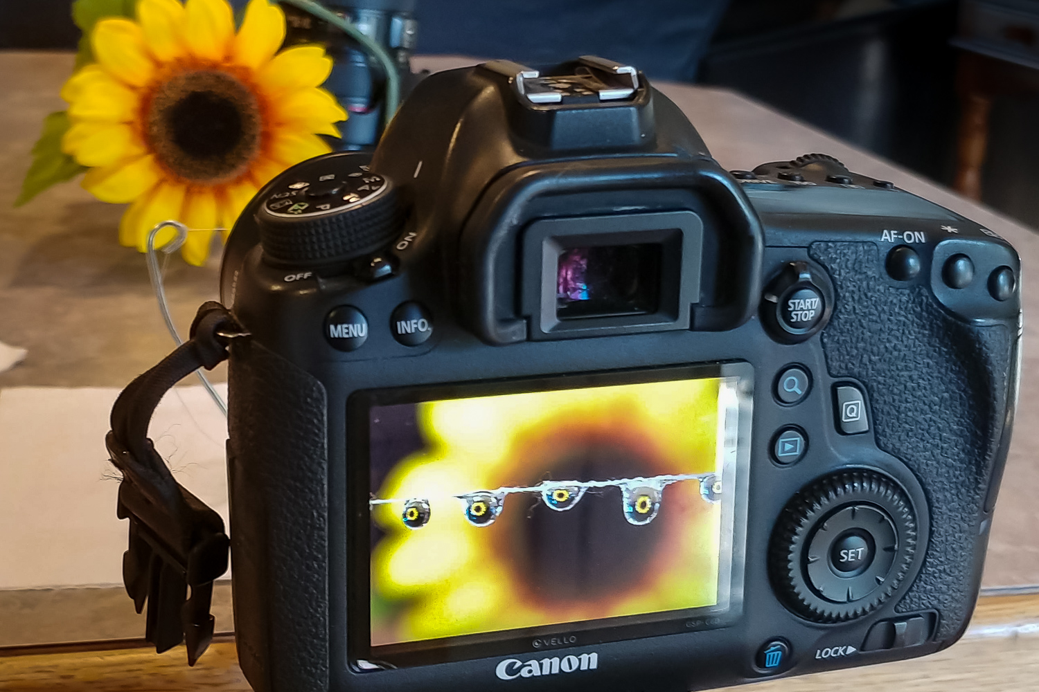 Image: Using the Live View mode of your camera can really help in getting critical focus.