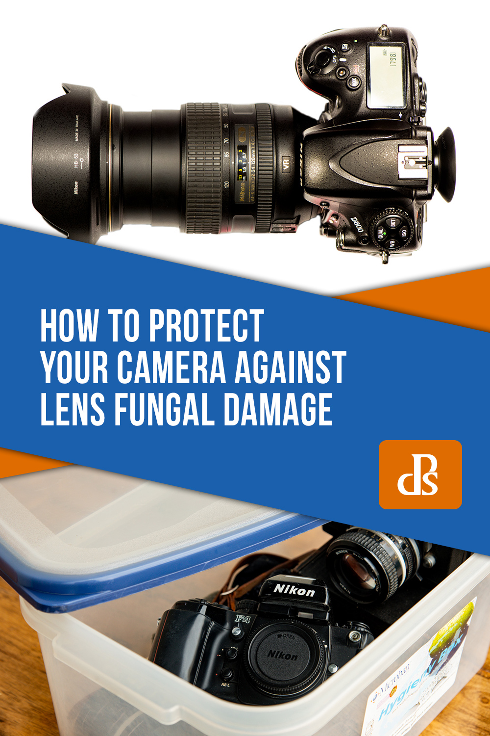 lens-fungal-damage-protection