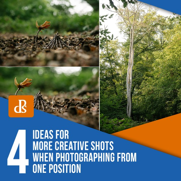 4 Ideas for More Creative Shots when Photographing from One Position
