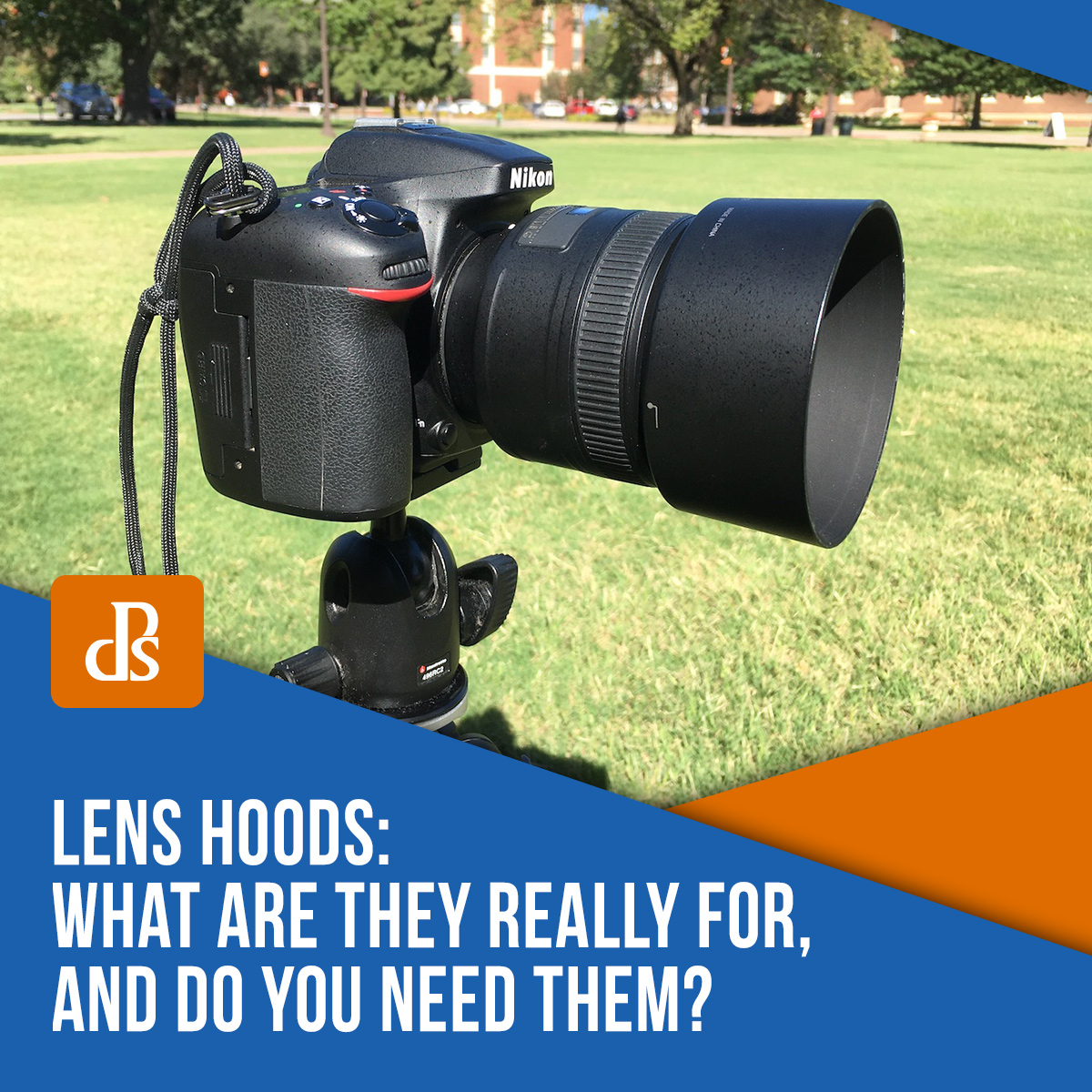 lens-hoods-what-are-they-for