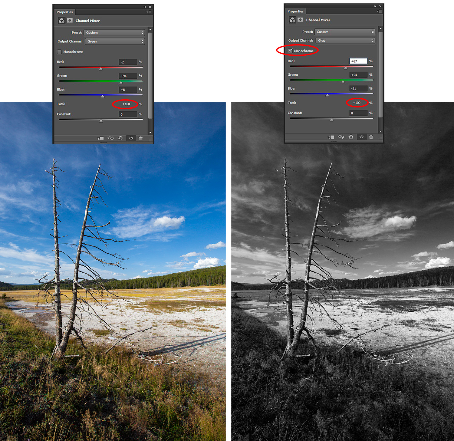 Photoshop Adjustment Layers Explained and How to Use Them (Part 2)