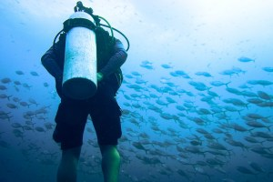 News: Could This Sea-Thru Algorithm Be the Future of Underwater Photography?