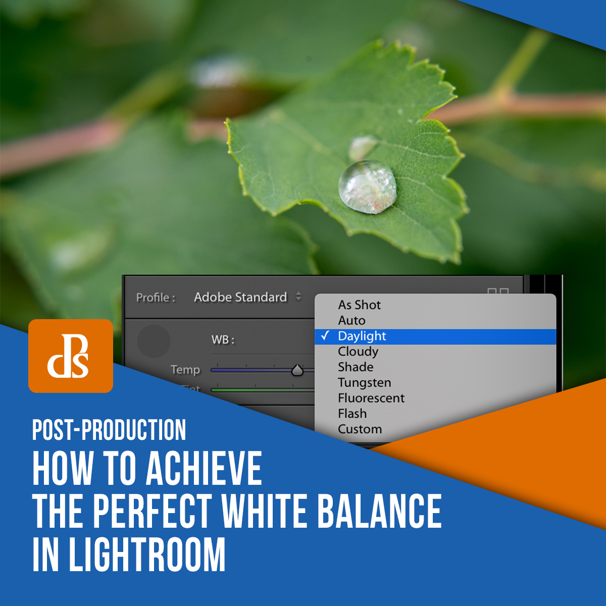 perfect-white-balance-in-lightroom